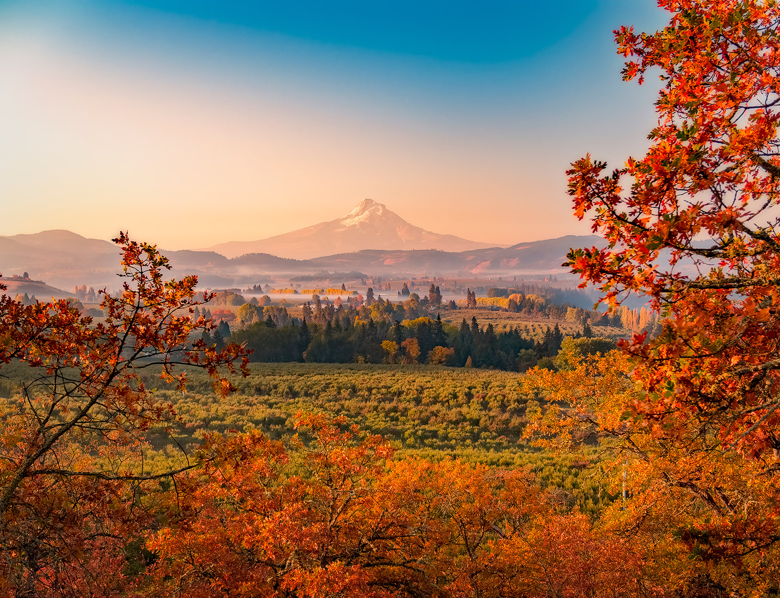 Sunrise at Mt Hood overlooking the vineyards and orchards
